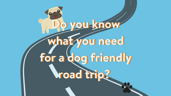 How to take a dog friendly roadtrip!