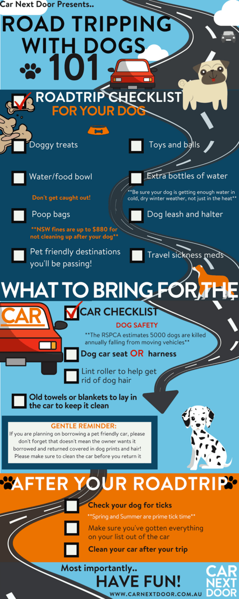 Road-Tripping-with-dogs-101--4-